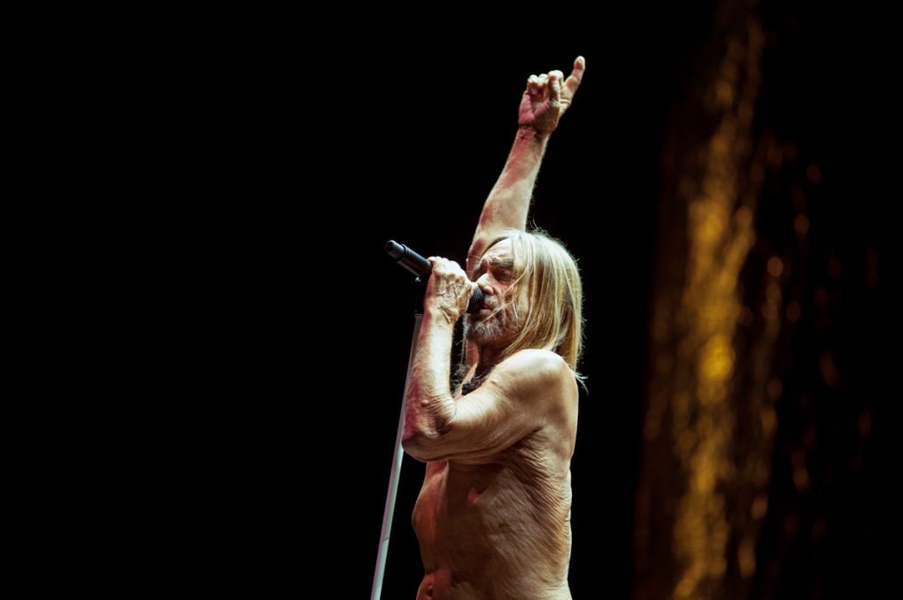 O Son Do Camiño 2019 Iggy Pop